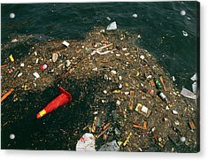 Rubbish Floating On A River Acrylic Print by Tony Craddock/science Photo Library