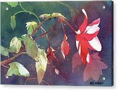 Ruby Begonia Acrylic Print