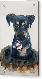 Ruby - Original Sold Acrylic Print by Therese Alcorn