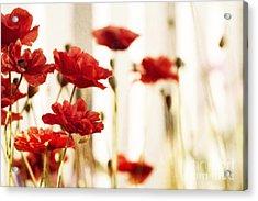 Ruby Reds Acrylic Print by Priska Wettstein