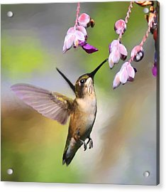 Ruby-throated Hummingbird - Digital Art Acrylic Print by Travis Truelove