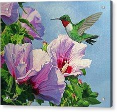 Ruby-throated Hummingbird Acrylic Print by Ken Everett