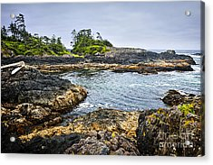 Rugged Coast Of Pacific Ocean On Vancouver Island Acrylic Print by Elena Elisseeva