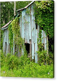 Ruin In The Woods Acrylic Print
