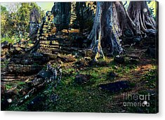 Ruins And Roots Acrylic Print by Julian Cook