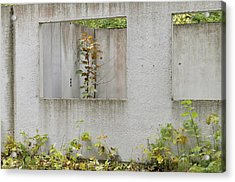 Ruins Of A Building, Prefabricated Concrete Unit Of A House, Recaptured By Nature, Mecklenburg-western Pomerania, Germany Acrylic Print by Frederik