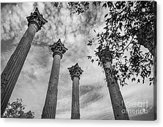 Ruins Of Windsor In Southwest Mississippi Acrylic Print