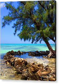 Rum Point Cove Acrylic Print