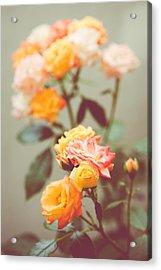 Rumba Rose Acrylic Print