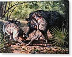 Rumble In The Palmetto Acrylic Print by Mike Roberts