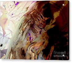Acrylic Print featuring the photograph Rumination by Joy Angeloff
