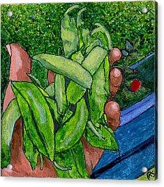 Rummenie's Snap Peas Acrylic Print