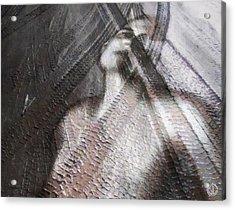 Run Over Acrylic Print by Gun Legler
