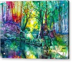 Runes By The Stream Acrylic Print by Patricia Allingham Carlson