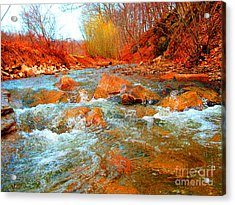 Running Creek 2 By Christopher Shellhammer Acrylic Print