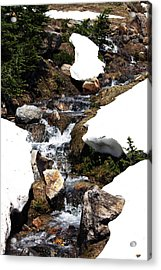 Running Down The Mountain Acrylic Print
