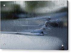 Running In The Rain Acrylic Print