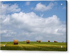 Rural America - A View From Kansas Country Roads Acrylic Print