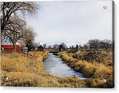 Rural Colorado Acrylic Print by Marta Alfred