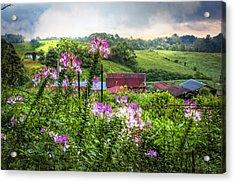 Rural Garden Acrylic Print by Debra and Dave Vanderlaan