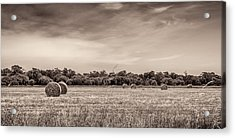 Rural Land Acrylic Print