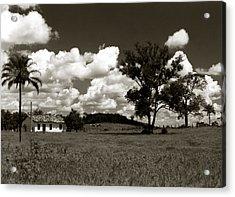Acrylic Print featuring the photograph Rural Landscape by Amarildo Correa