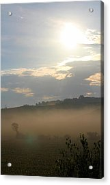 Rural Morning Acrylic Print by Angie Phillips