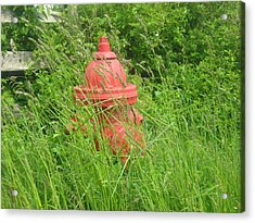 Acrylic Print featuring the photograph Rural Red by Bruce Carpenter
