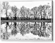 Rural Reflections Acrylic Print by Ron Plasencia