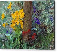 Rural Spring Acrylic Print