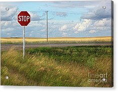 Rural Stop Sign On The Prairies  Acrylic Print by Sandra Cunningham