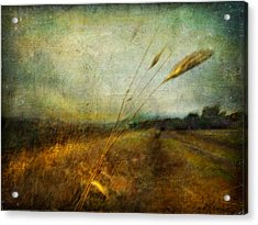 Ruralscape #19. The Victory Of Silence Acrylic Print