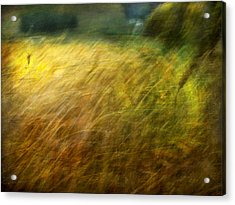 Ruralscape #8. Field And Wind Acrylic Print by Alfredo Gonzalez