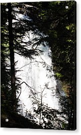 Rushing Through The Trees Acrylic Print