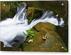 Rushing Water At Whatcom Falls Park Acrylic Print by Priya Ghose