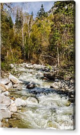 Rushing Water Acrylic Print by Sue Smith