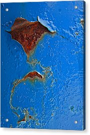 Rust Abstract Acrylic Print by Mary Bedy