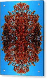 Acrylic Print featuring the photograph Rust And Sky 5 - Abstract Art Photo by Marianne Dow