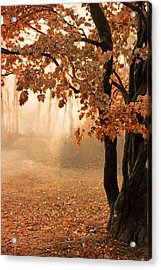 Rust Apricot Orange Maple Autumn Sunrise Acrylic Print