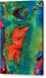 Acrylic Print featuring the photograph Rust Is Beautiful by Jerry Gammon