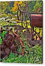 Rusted Acrylic Print by Colleen Kammerer