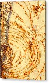 Rusted Web Acrylic Print by Rebecca Skinner