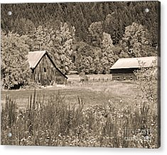 Rustic Beauty In Sepia Acrylic Print by Connie Fox
