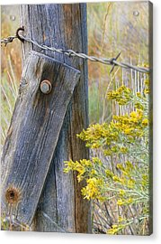 Rustic Fence And Wild Flowers Montana Acrylic Print by Jennie Marie Schell