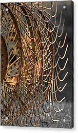 Rustic Hay Rake Acrylic Print by Brian Stevens