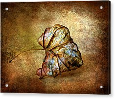 Rustic Acrylic Print by Jessica Jenney
