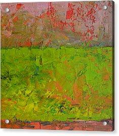 Rustic Roadside Series - Celery Flats Acrylic Print