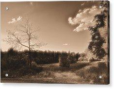 Rustic Acrylic Print by Thomas  MacPherson Jr