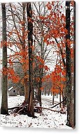 Rustic Winter Acrylic Print