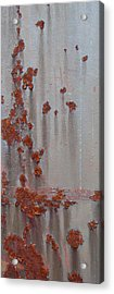 Rusty Abstract Acrylic Print by Jani Freimann